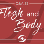 Q#35 Flesh and Body