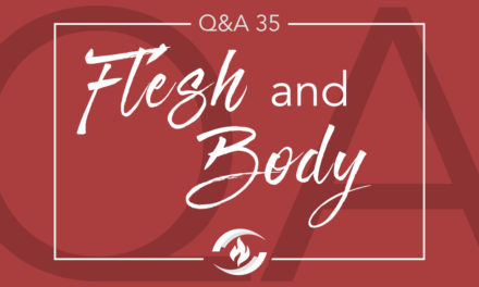 Q#35 Flesh and Body