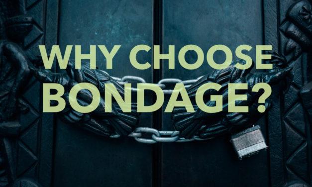 Why Choose Bondage?