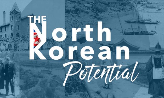 The North Korean Potential