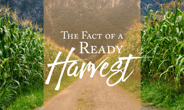 The Fact of a Ready Harvest