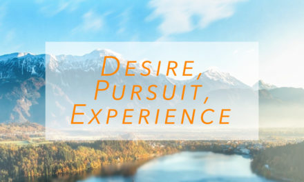 Desire, Pursuit, Experience