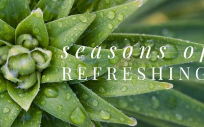 Seasons of Refreshing: Remembering the Early 1970s
