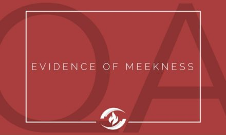 № 111 – Evidence of Meekness