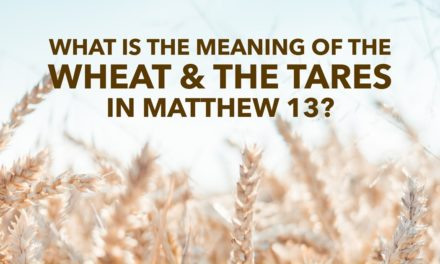 What Is the Meaning of the Wheat and the Tares in Matthew 13?