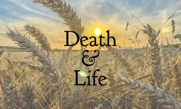 № 142 – Death and Life